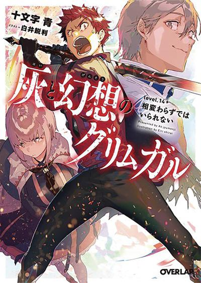 GRIMGAR OF FANTASY & ASH LIGHT NOVEL 14.5