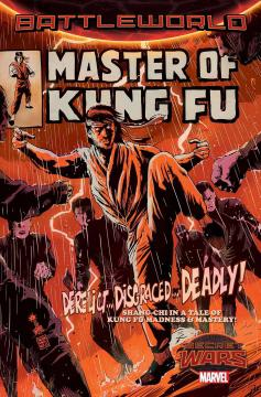 MASTER OF KUNG FU (SW)
