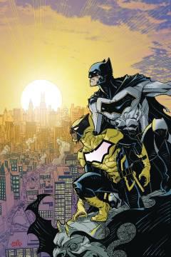BATMAN AND THE SIGNAL