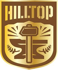 WALKING DEAD HILLTOP FACTION PIN