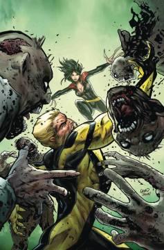 Hunt for Wolverine