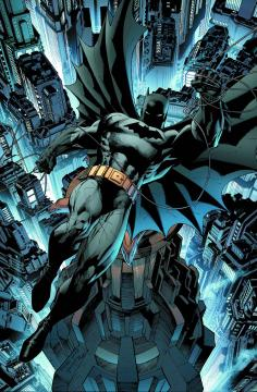ABSOLUTE BATMAN AND ROBIN THE BOY WONDER HC