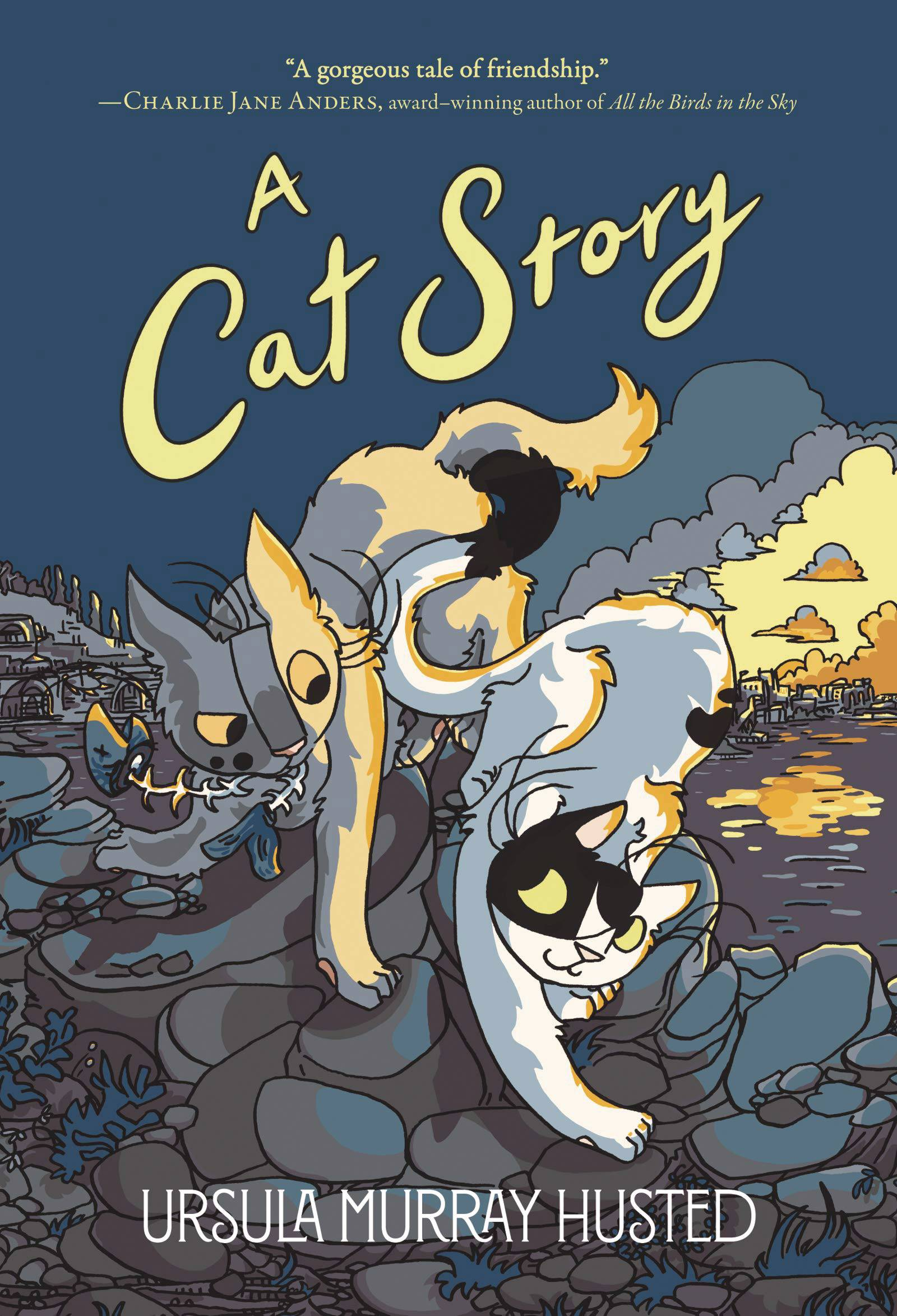 CAT STORY TP