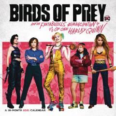 BIRDS OF PREY HARLEY QUINN 2021 WALL CALENDAR