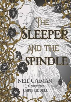 NEIL GAIMAN SLEEPER & THE SPINDLE TP